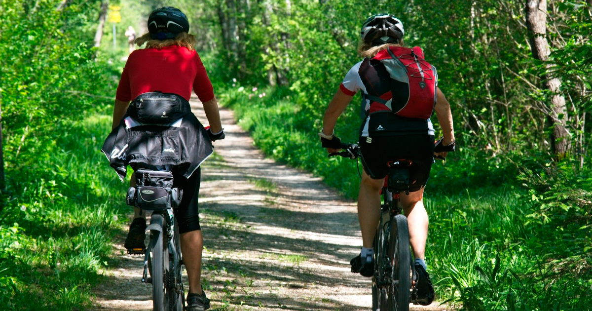 Photo of two people bikepacking along a trail through woods. Image source: https://pixabay.com/photos/cycling-leisure-recovery-forest-2520007/