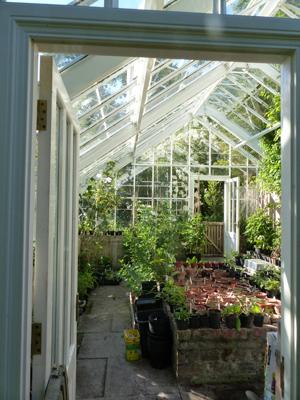 Glenarn Greenhouse Image © S. Thornley, Glenarn Garden.