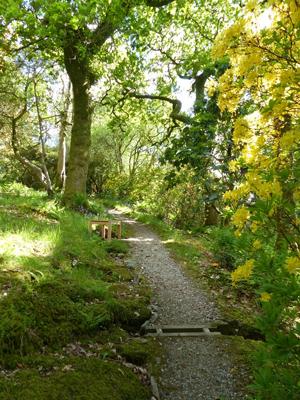 Glenarn Silent Space. Image © S. Thornley, Glenarn Garden.