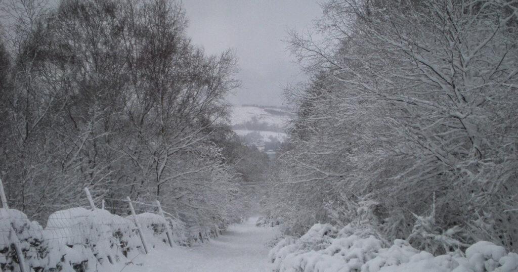 Highlandman's Road in the snow